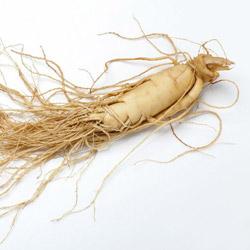 imagen de Ginseng mejores suplementos de testosterona
