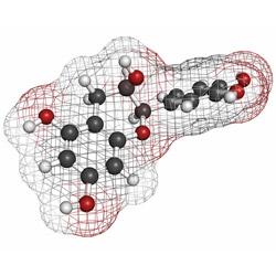 imagen de Luteolina mejores suplementos de testosterona